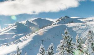 Ski Bus Reyes Cerler 2021
