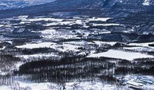 Esquí powder en Niseko, Hokkaido