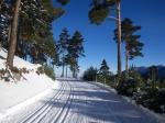 Centro de esquí nórdico de Navafría (Segovia). El esquí de fondo a un paso de Madrid